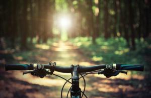 Bike in Sun